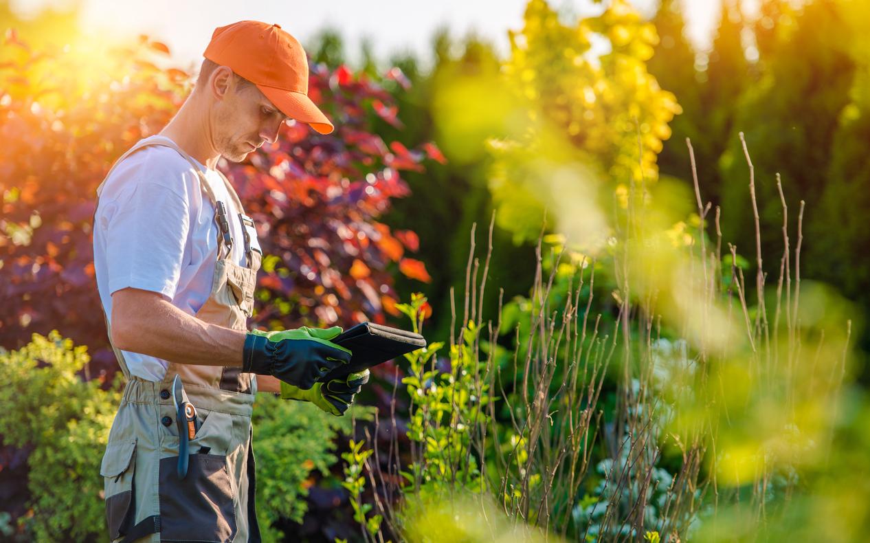 La d couverte du m tier de paysagiste parcours emploi for Emploi paysagiste